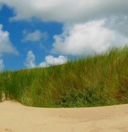Ostfriesische Insel Norderney entdecken