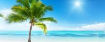 Inselparadiese Malediven