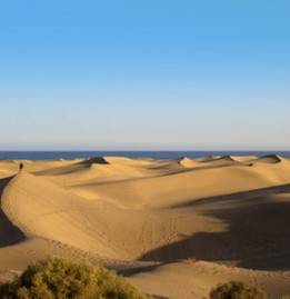 Dünen in Maspalomas auf Gran Canaria