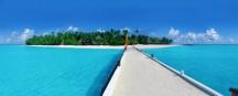 Manta-Saison auf den Malediven eröffnet
