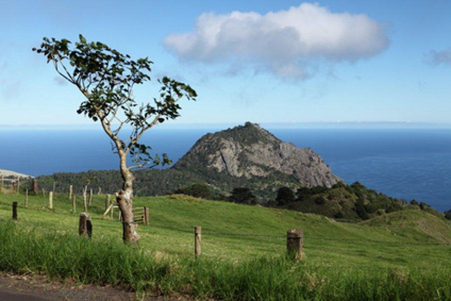 Wandern auf St. Helena