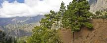 Urlaub auf La Palma